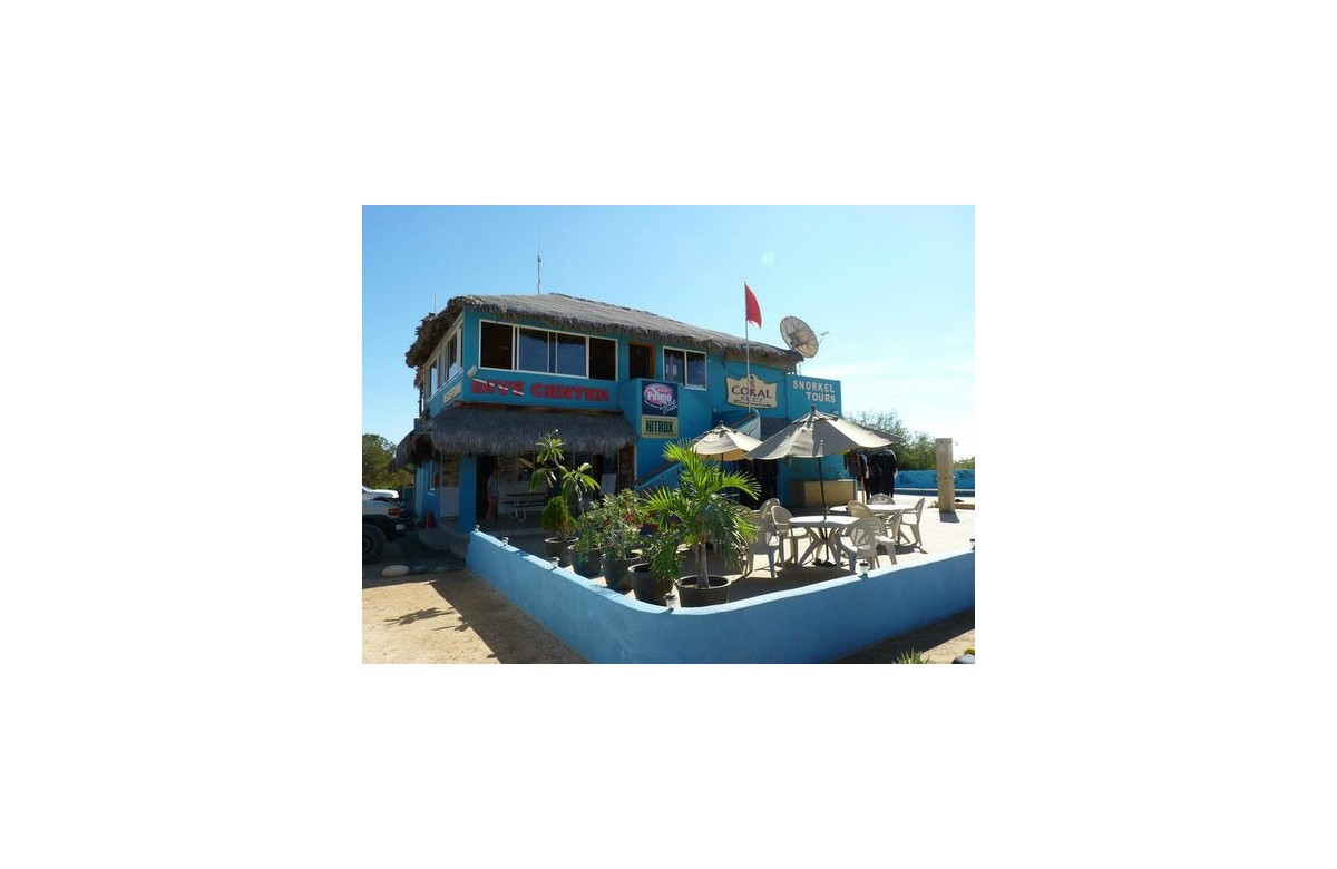 CABO PULMO BEACH RESORT I 2 PEOPLE I 6 NIGHTS HOTEL + 5 DIVING DAYS I MEXICO
