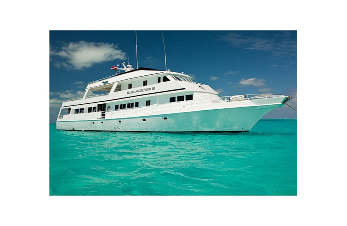 BELIZE AGGRESSOR III I SAVE 1210€ I 22 AGO - 01 SEPT 2020 I LIGHTHOUSE REEF, HALF MOON CAY , TURNEFFE I BELIZE